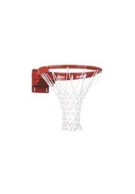 Profesionalus krepšinio lankas su tinkleliu