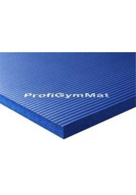 2,5 cm storio mėlynas mankštos kilimėlis reabilitacijai