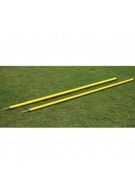 Agility poles set