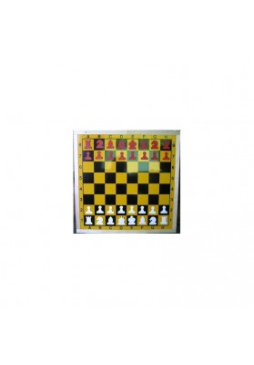Magnetic demo chessboard
