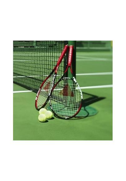 Badmintono raketės, stalo teniso raketės - SPORTIJA