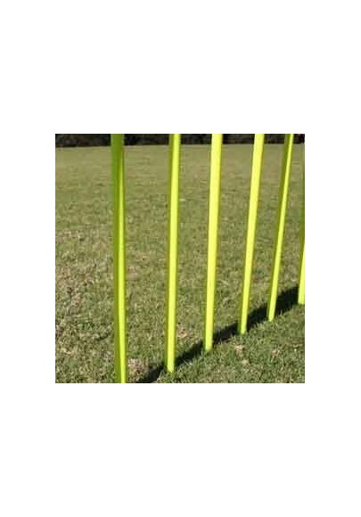 Agility training and markers