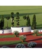 Winners platforms